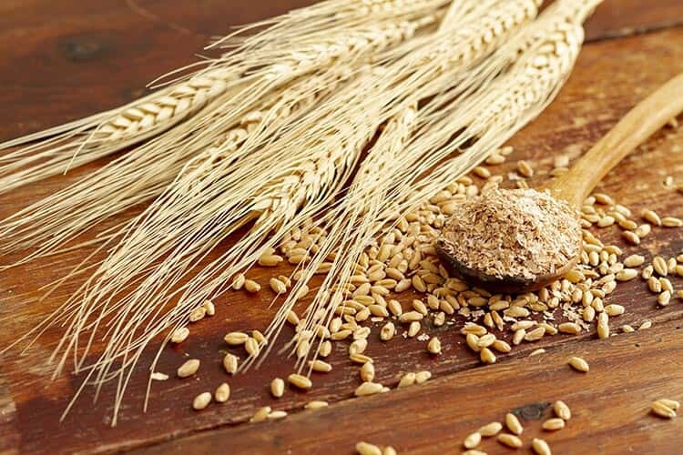 Tam Tahıllı Ekmek İle Tam Buğday Ekmeği Arasındaki Fark Nedir?